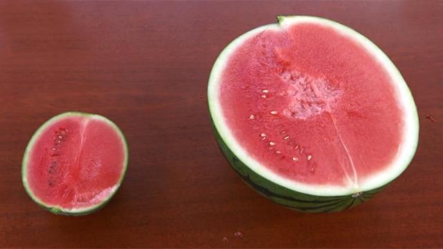 애플 수박 크기 작아도 맛은 대박