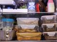 발효박사 케이윌 냉장고