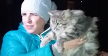 다리가 얼어 구조되었던 고양이