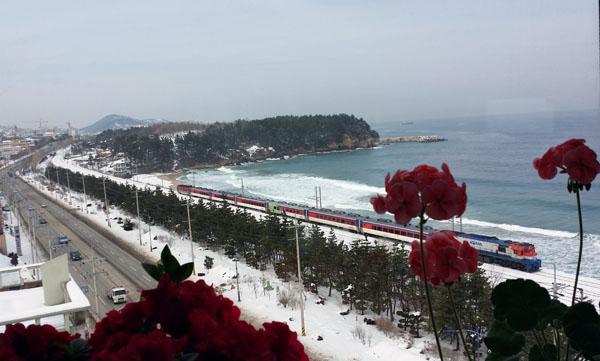 동해시 해변을 지나는 기차동해시 해안도로를 지나는 열차