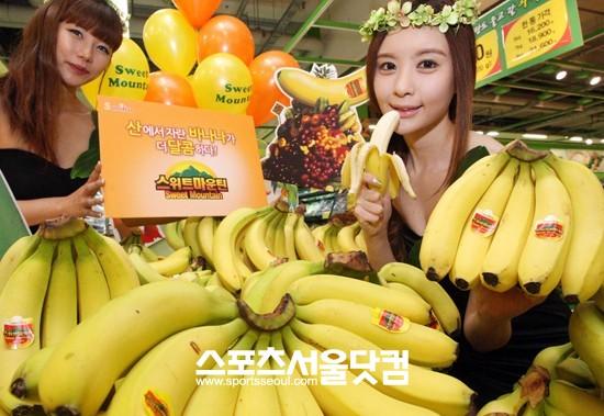 '바나나 전염병' 파나마병 확산 조짐 이제 못 먹는다?