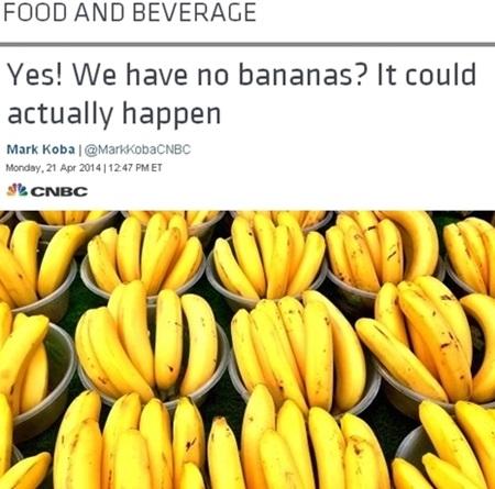 '바나나 전염병' 확산, 바나나 우유 먹으면..