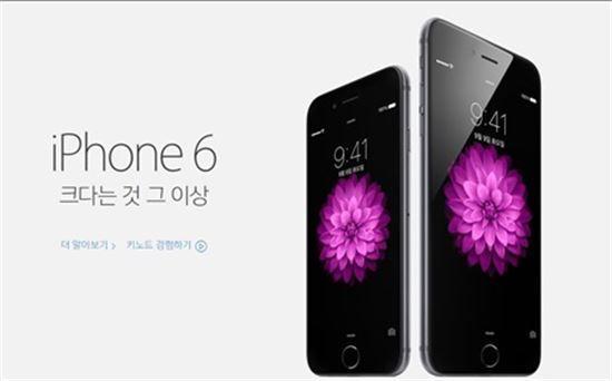아이폰6, 두달새 100만대 판매..국내 점유율 20% 내다봐