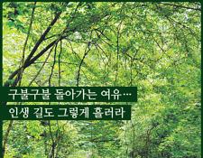 [여행] '명승' 지정된 양양~홍천 구룡령 옛길